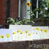 Kids Crafts: Sunflower Thank You Cards