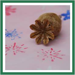 0 pink poppy snowflake stamp red