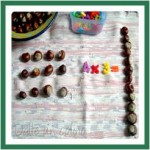 Conkers Counting