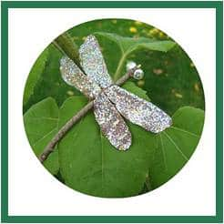 Dragonflies Sparkly