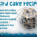 How to… make a Bird Cake & Necklaces (Guest Post)