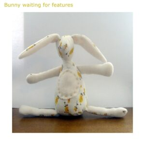 10 bunny waiting for features