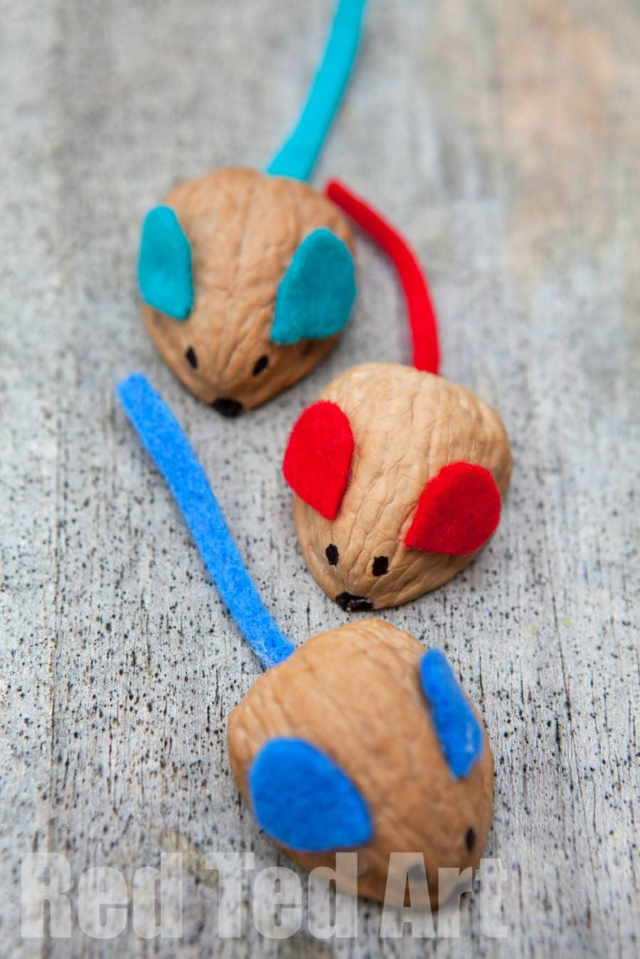 walnut crafts - racing mouse