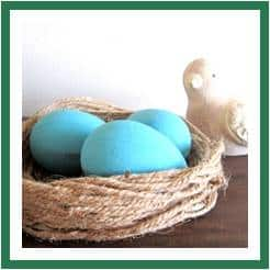 blue egg nest