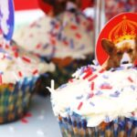 Weekly Photo: Cupcake & Celebration