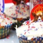 Weekly Photo: Cupcake & Celebration