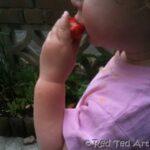 kids learn photography