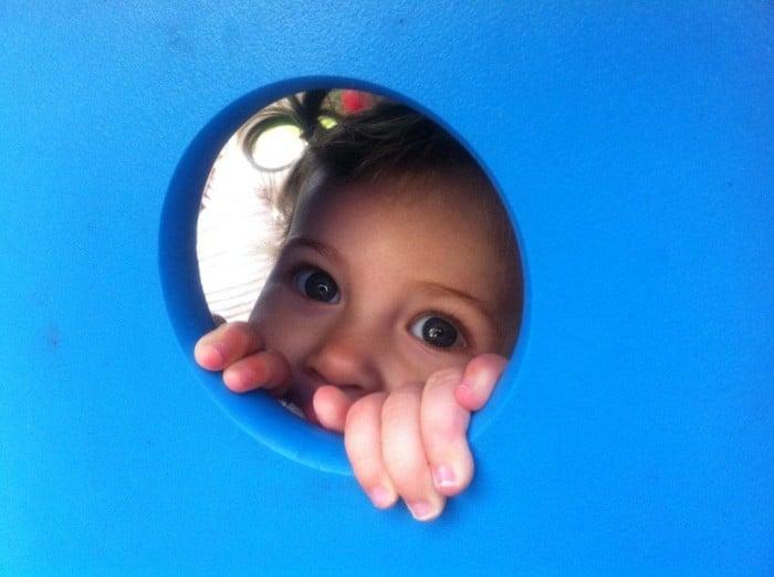 Weekly Photo: Peek-a-boo