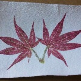 autumn crafts leaf prints (2)
