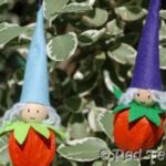 christmas elves physalis (2)