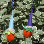 christmas elves physalis (3)