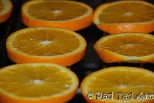 how to dry orange slices (2)