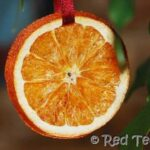 how to dry orange slices