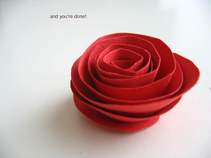 love rose valentines