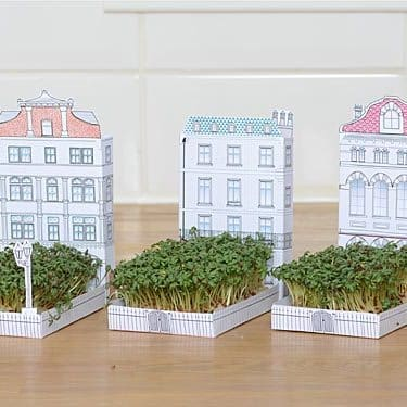 matchbox crafts cress