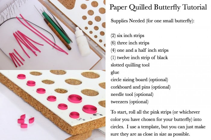 How to make paper quilled butterflies guest post red for How to make your own quilling paper