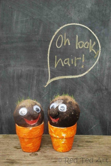 How to make grass heads - easy grass seed heads for Spring and Summer. STEAM for Preschool, KS1 and KS2. Fun Grass Heads DIY