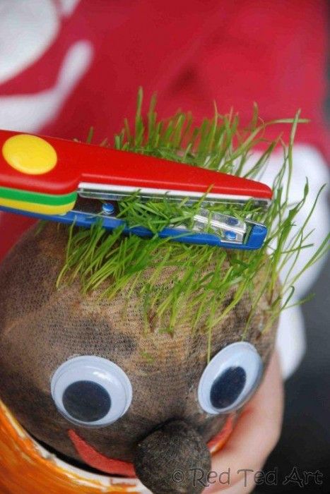 grass heads for kids, grow your own grass head