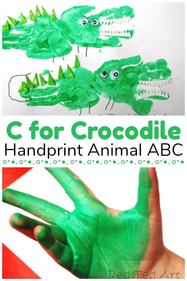 C is for crocodile collage showing toddler hand