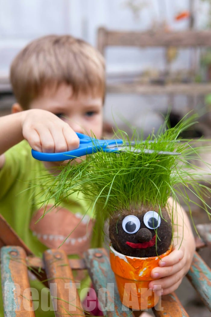 Grass Heads for Kids - these Grass Heads are so so easy to make and super fun to watch grow and care for. A great art come science activity for kids. Teaching them about looking after plants too! How to Make Grass Heads! #Spring #Grassheads #science #steam #planting #kids