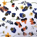 pressed flower crafts