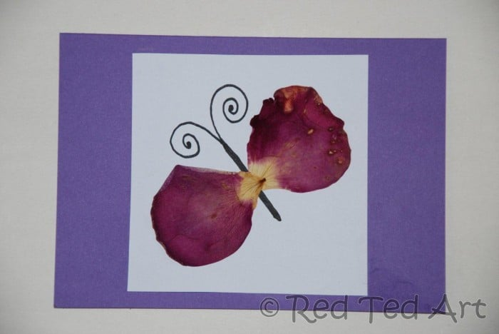 http://www.redtedart.com/wp-content/uploads/2012/06/pressed-flower-crafts.jpg