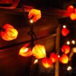Autumn Fairy Lights – Physalis Crafts