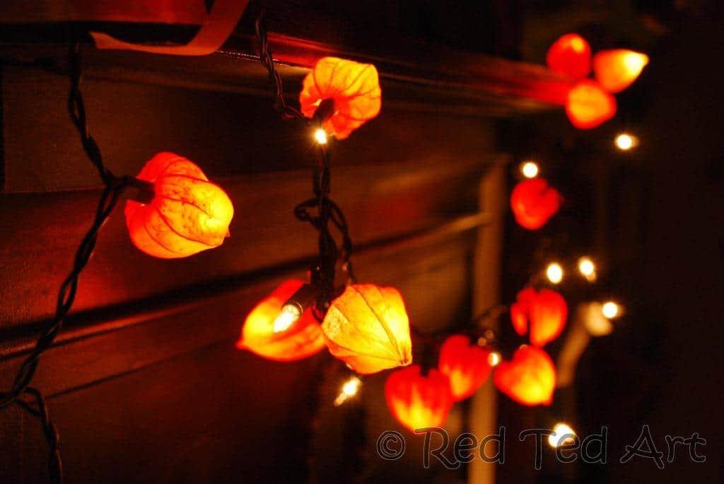 Autumn Fairy Lights Physalis Crafts