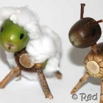 kids-get-crafty-acorn-animals