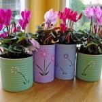 pained plant pots