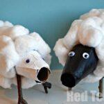 Toilet Paper Rolls Craft: Sheep