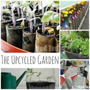 Upcycled garden ideas