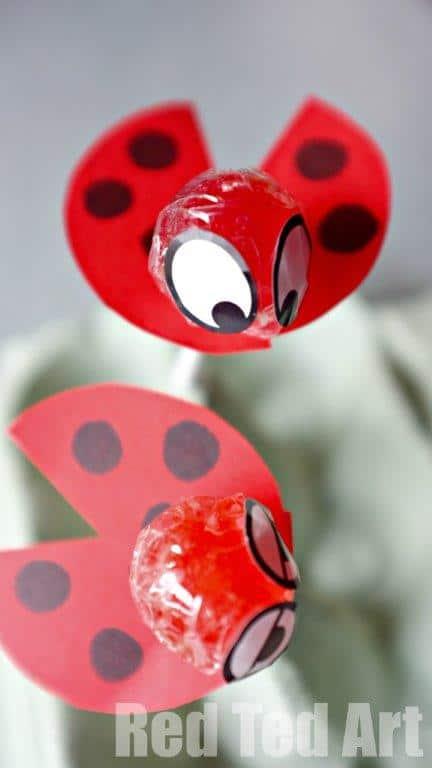 Ladybird Lollipops