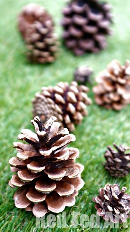 Pine cone craft ideas