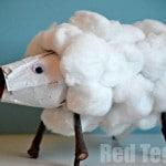 TP Roll Sheep