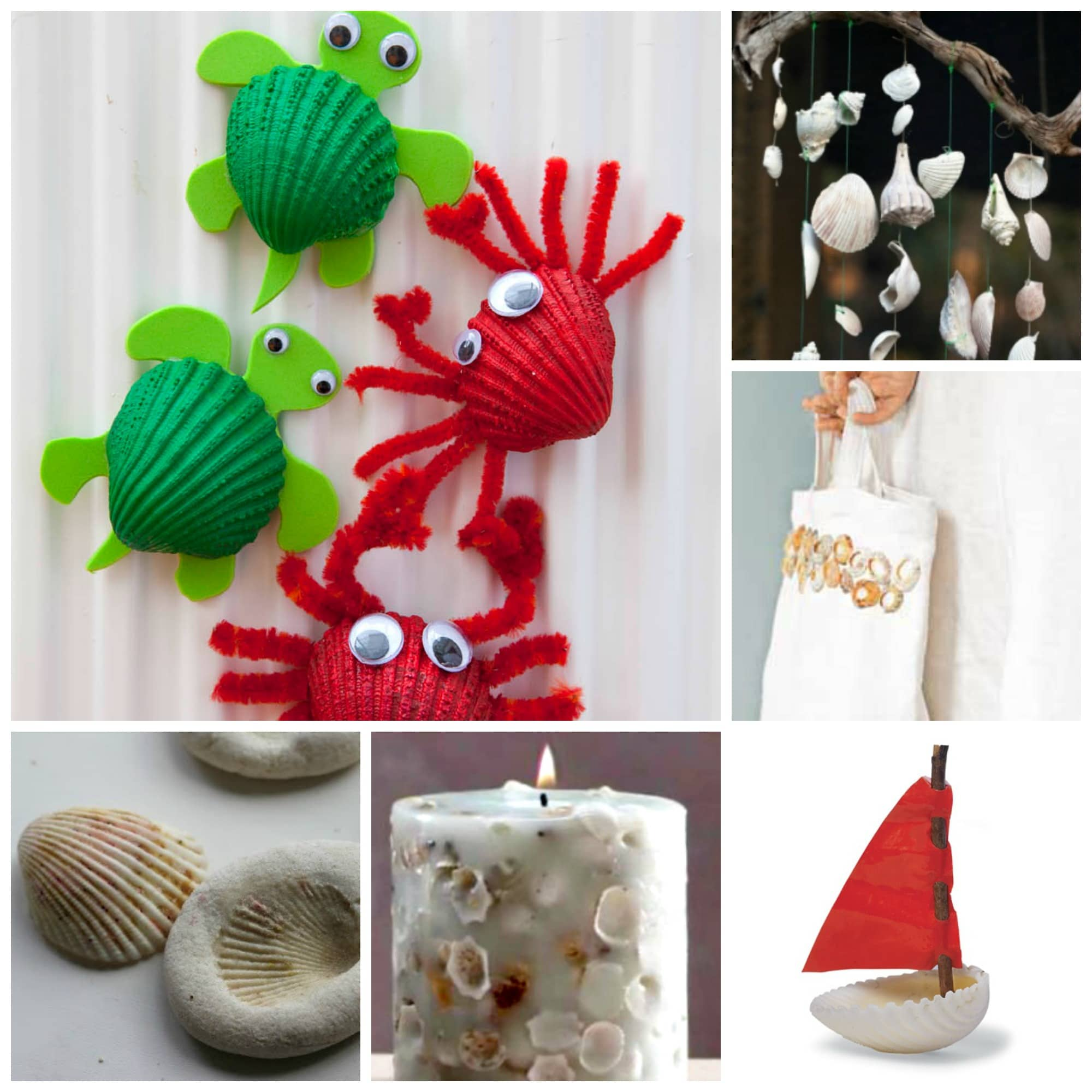 37 Sea Shell Craft Ideas Red Ted Art