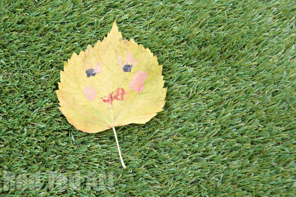 Daily Creativity – Leaf Face
