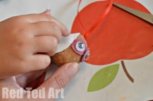 Walnut Crafts for kids