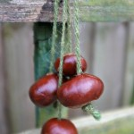 How to Play Conkers