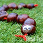 Autumn Crafts: Horse Chestnut Snake (Kastanienschlange)