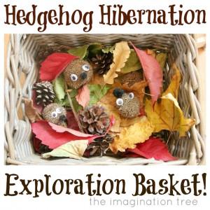 Hedgehog+Hibernation+Exploration+Basket