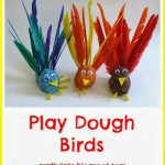 PlayDoughBirdsColl