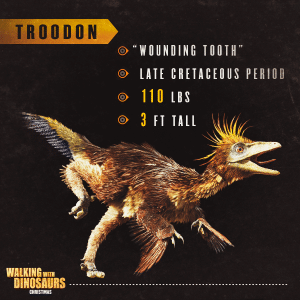 Walking with Dinosaurs Activities How to Draw Troodon