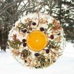 Bird Feeder Ice Ornament