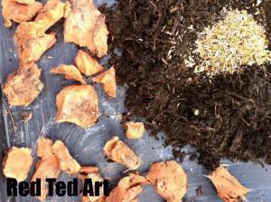 Seed Bomb Recipe Gift Idea