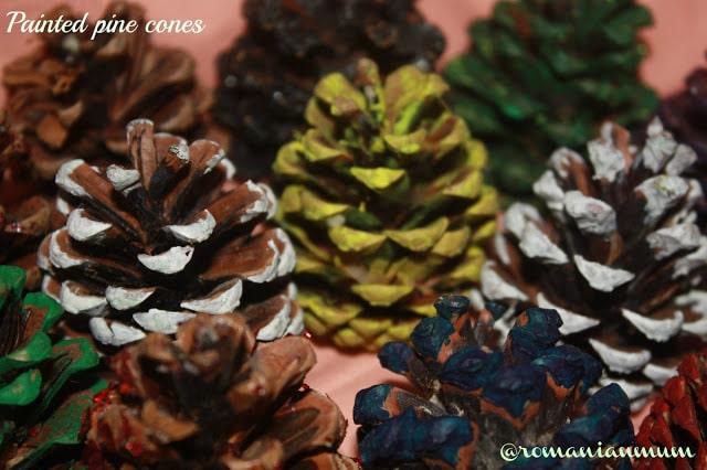 pine cones cu writing