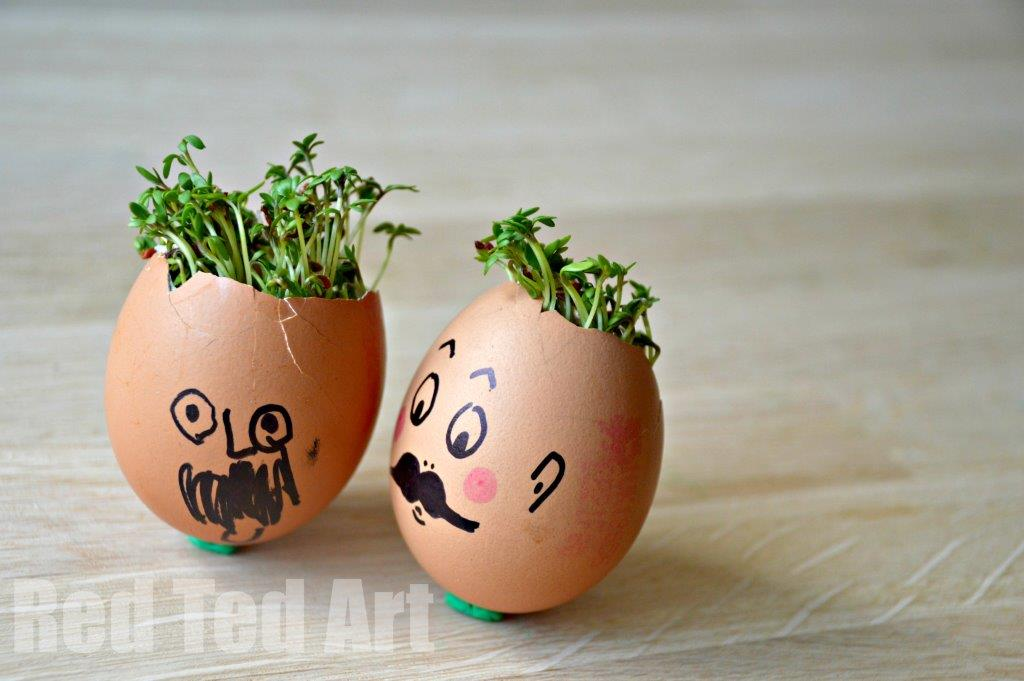 Spring Activities: Cress Heads