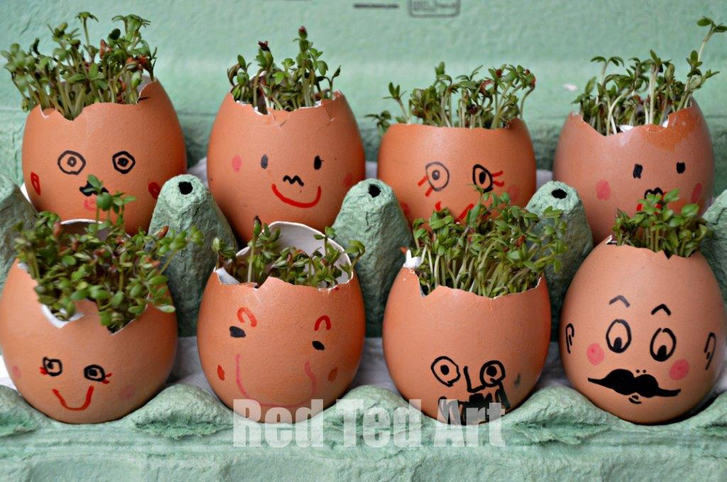 Cress Head Craft for kids. Easy Preschool Activity for Spring. Preschool STEAM activity. Cress heads how to. Sprout heads. #spring #preschool #steam