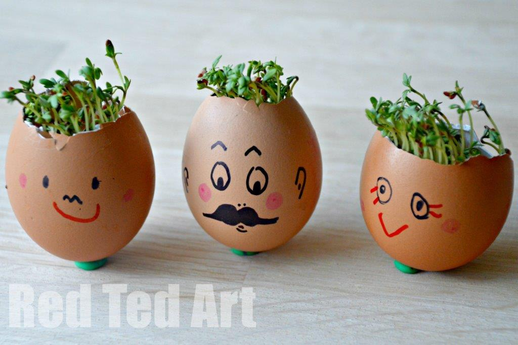 Cress Head How to. Easy Preschool Activity for Spring. Preschool STEAM activity. Cress heads how to. Sprout heads. #spring #preschool #steam