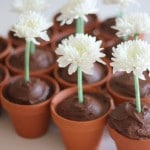 Flower Craft Party Ideas